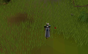 Hot cold clue - SW of Falconer.png