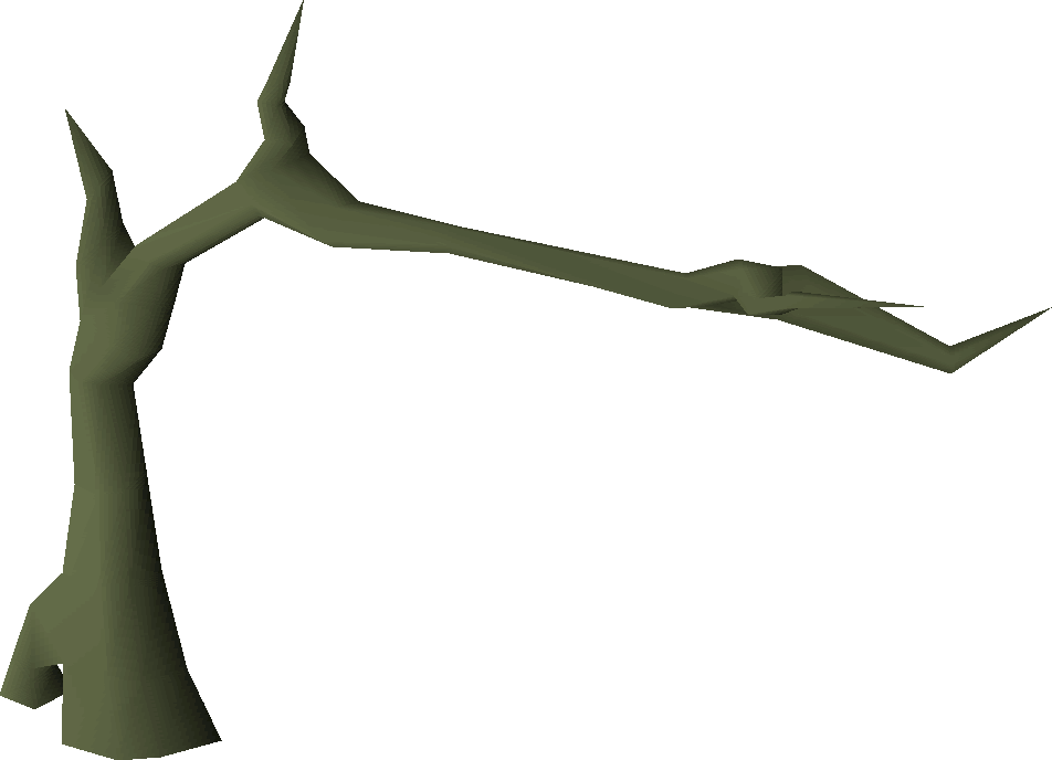 Tall tree.png