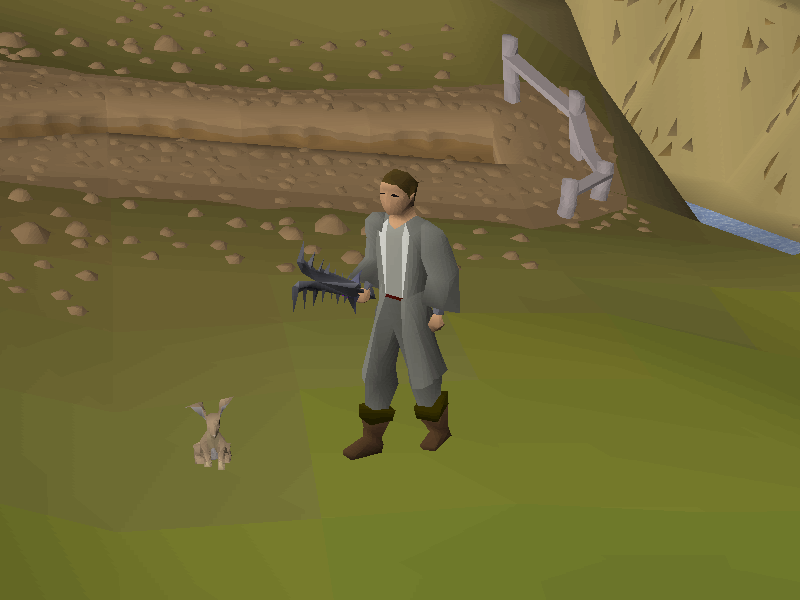 Wilderness Diary.png