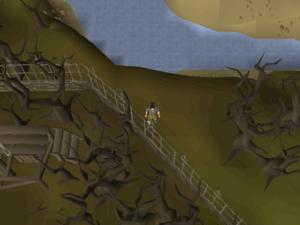 Treasure Trails/Full guide/All - OSRS Wiki