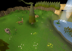 Enchanted Valley.png