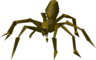Giant spider (Level 2).png