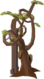 Grape vine stage 7.png