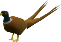 Pheasant (2 tails).png