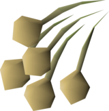 Onion seed detail.png