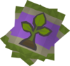 Seed pack detail.png