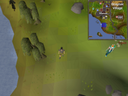 Map clue solution Draynor willows.png