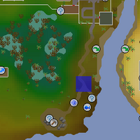 Hot cold clue - Lumbridge Swamp map.png