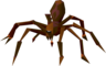 Giant spider (Level 50).png
