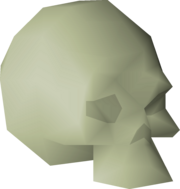 Small fossilised skull detail.png
