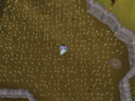 Emote clue - think lumbridge mill wheat field.png