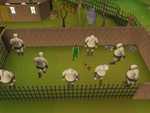 Emote clue - cheer ogre training camp.png