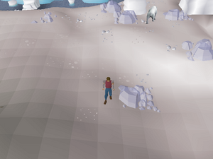 Hot cold clue - Polar Hunter area.png