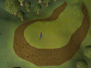 Osrs Coordinate Clue