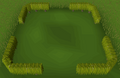 Small box hedge built.png