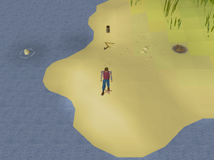 Hot cold clue - mudskipper point.png