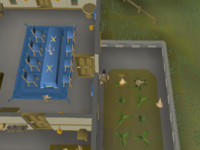 Cryptic clue - dig chicken pen in champion's guild.png