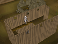 Barbarian Outpost Agility Course (4).png