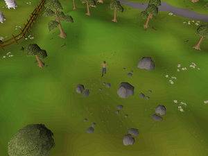 Hot cold clue - west of Catherby.png