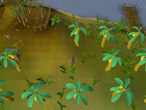 Hot cold clue - Musa Point.png