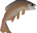 Common tench detail.png