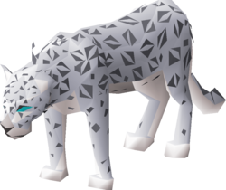 Male snow leopard.png