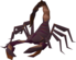 Scorpion (Level 37).png