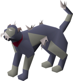 Wily cat (grey and blue) pet.png