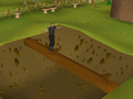 Gnome Stronghold Agility Course (1).png
