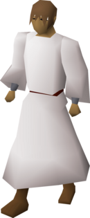 Druid's robe equipped.png
