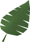 Palm leaf detail.png