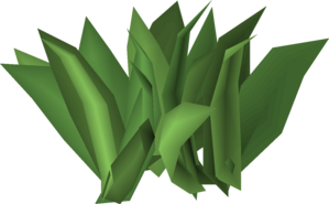 Irit leaf stage 4.png