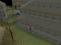 Varrock Rooftop Course (1).png