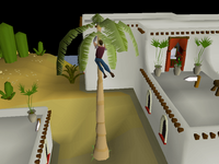 Pollnivneach Rooftop Course (5).png