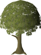 Willow Tree (stage 4).png