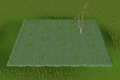 Forest habitat built.png