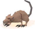 Angry giant rat (unused, 1).png