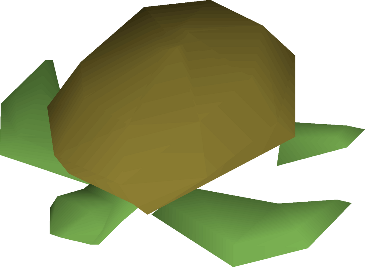 Raw sea turtle - OSRS Wiki