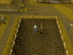 Emote clue - beckon digsite winch.png