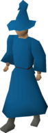 A player wearing blue wizard robes.