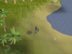 Emote clue - beckon east kharazi coast.png