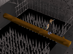 Wilderness Agility Course (4).png