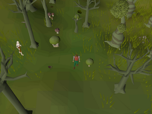 Hot cold clue - Haunted Woods.png