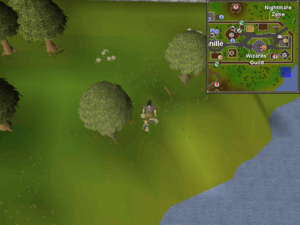 Clue Hunter Outfit Osrs Wiki
