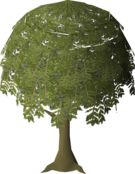 Willow Tree (stage 5).png