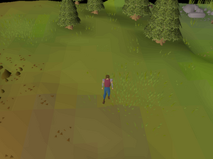 Hot cold clue - Eagles' Peak.png