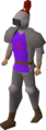 Ardougne knight set equipped.png