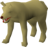 Desert Wolf (historical).png