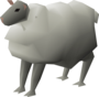 Sheep (Zanaris) (historical).png