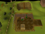 Emote clue - cry gnome agility arena.png